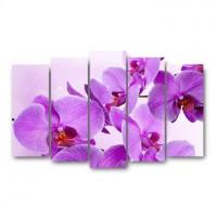 TOPPOSTERS X-026H Модульный холст орхидеи 125х80